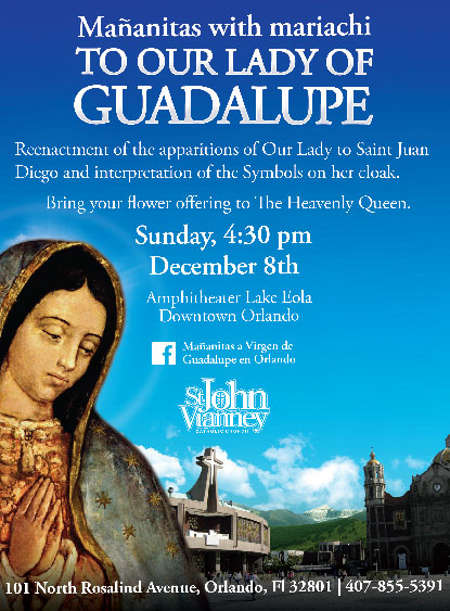 ourladyguadalupe20131206