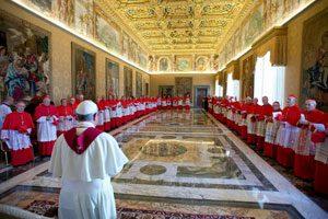 cardinals20140117tn