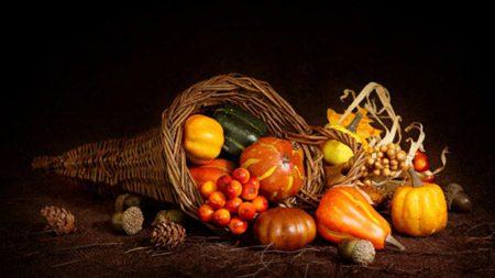 thanksgiving cornucopia20141120