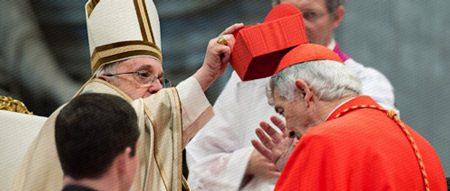 cardinal20150219