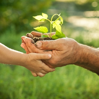 encyclical letter laudato si of the holy father francis on care for our common home