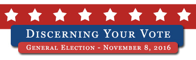discerning-your-vote